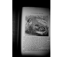 Frog Illustrated Photographic Print