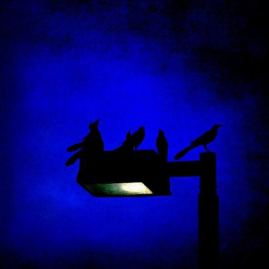Sleepless at Midnight by Trish Mistric
