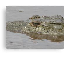 Crocodile in Rio Grande de Tarcoles, Costa Rica Canvas Print