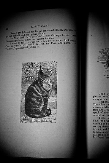 Cat Illustrated 1879 by Jeff Johannsen