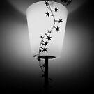 Light by timkirman