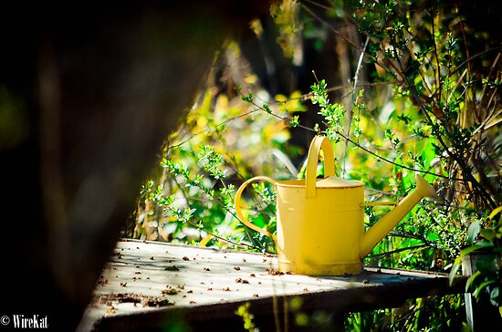 Watering Can by WireKat