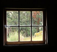 Room With A View by Kylie Reid