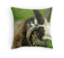 Heavy work carryng these! Throw Pillow