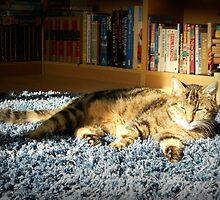 Rapstar Sunbathing by BlueMoonRose