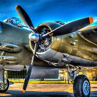 B-25 Mitchell by Steve Walser