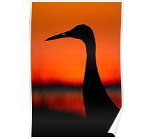 Sandhill Crane Silhouette. Poster