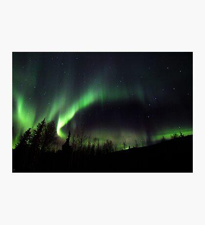 Alaskan Borealis Photographic Print
