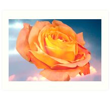 Rose For Every Sky Art Print