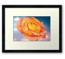 Rose For Every Sky Framed Print
