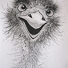 """""""Crikey!"""" by Sally Ford"""