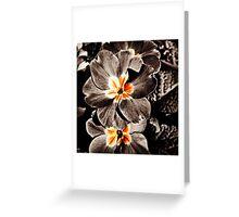 Slash of Coloured Flowers Greeting Card