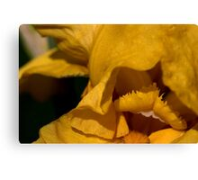 Open wide.. real WIDE!!!!!!!!!!!!!!!! Canvas Print