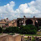 """The Roman Forum IV"" by mls0606"
