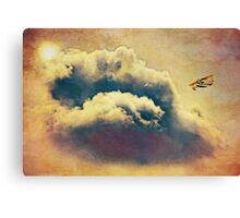 I dream of flying Canvas Print