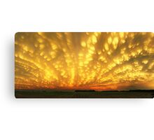 The Painted Sky Canvas Print