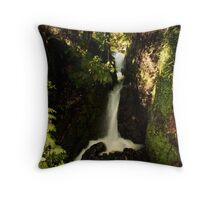 kaituna slipstream Throw Pillow
