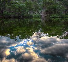 Reflection of an Untouched Land by Adam Burke