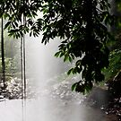 Behind the Falls by Fran53