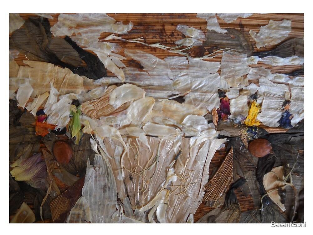 Rocky River Fall by BasantSoni