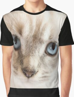 Blue Eyes Kitten Graphic T-Shirt