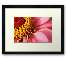 I'm Number One! - Daily Homework - Day 15 - May 22, 2012 Framed Print