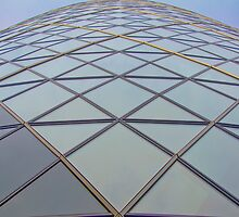 Paneful  - 30 Saint Mary Axe.   by JohnYoung