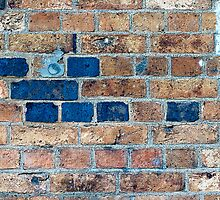 Another Brick in the wall by Ashley Beolens