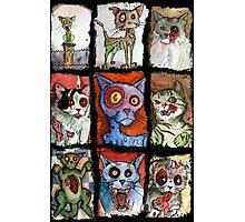 9 zombie cats Photographic Print