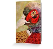 A Pheasant Portrait Greeting Card