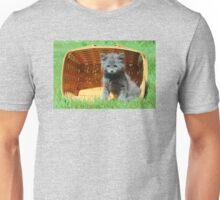 Grey Fluffy Kitten in Market Basket Unisex T-Shirt