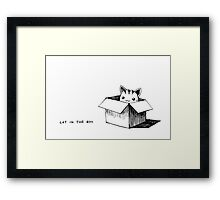 Cat in the box Framed Print