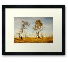 Lovely fall landscape Framed Print