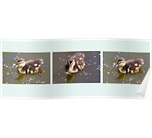 Three Little Ducklings Poster