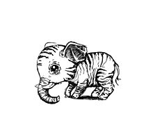 Little elephant Photographic Print