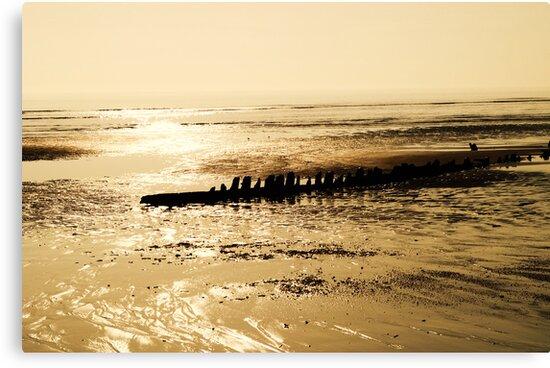 Shipwreck at Dawn  by Bria Williams