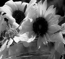 Sunflowers in Grayscale by Shellibean1162