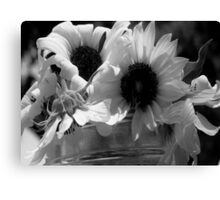 Sunflowers in Grayscale Canvas Print