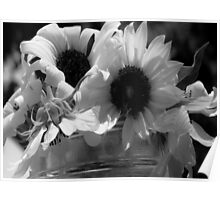 Sunflowers in Grayscale Poster