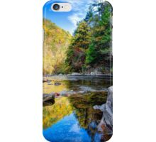 Chasing Fall Colors iPhone Case/Skin