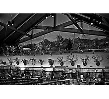 trophy hunt Photographic Print