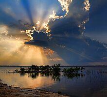 "Gorgeous ""God Rays"" by Carolyn  Fletcher"