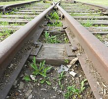 When Tracks Come Together 1 by Heather Crough