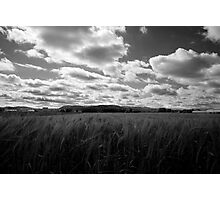 Through the fields after the rain Photographic Print