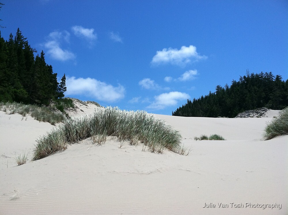 Sand dune by Julie Van Tosh Photography