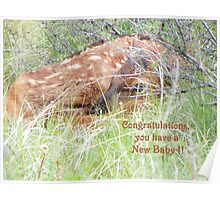New Baby Congratulations Poster