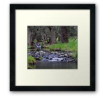 Talbragar River Framed Print