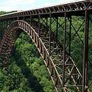 New River Gorge Bridge..Into the great wide open by jammingene