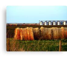 The Canadian Prairies Canvas Print