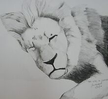 'The King in Slumber' by jkisinamal
